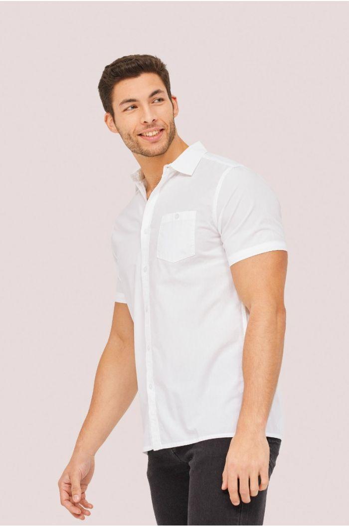 Multi colored striped casual Polo t-shirt