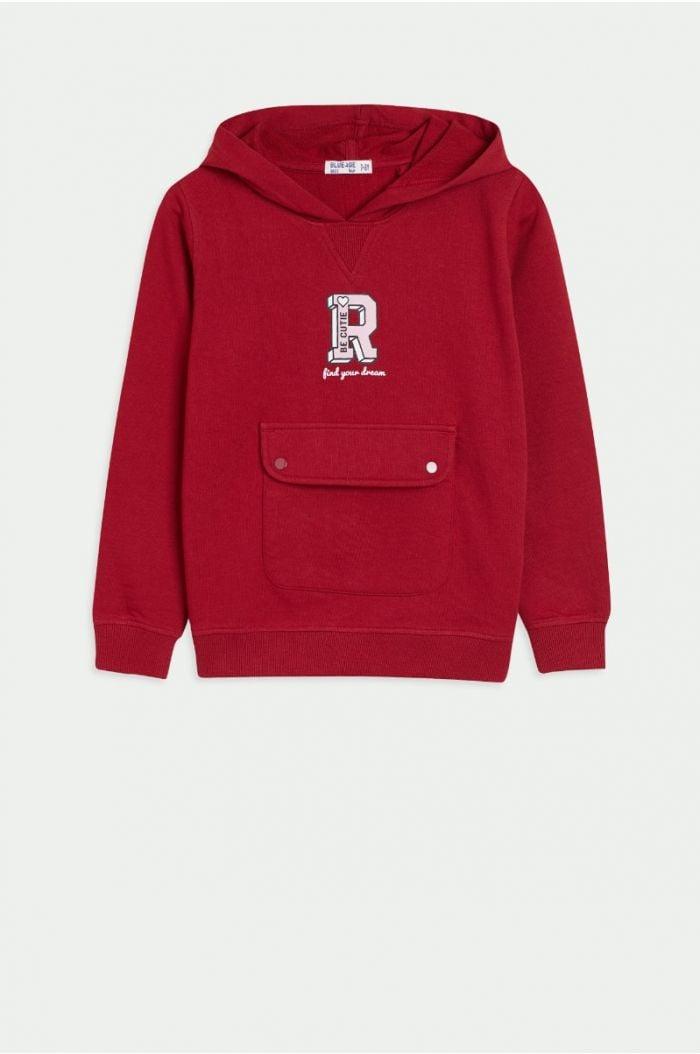 Sweatshirt hoodie with print