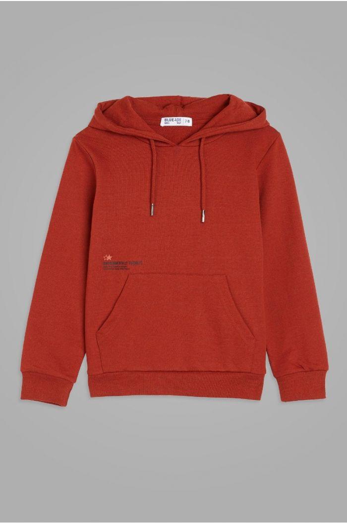 Sweatshirt hoodie with wording print